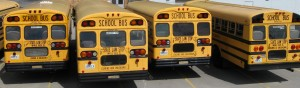 school buses crop